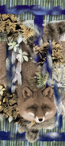 fox-blue